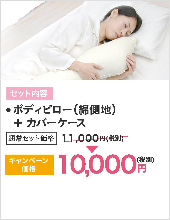 セット内容はボディピロー(綿側地)とカバーケース、キャンペーン価格10000円