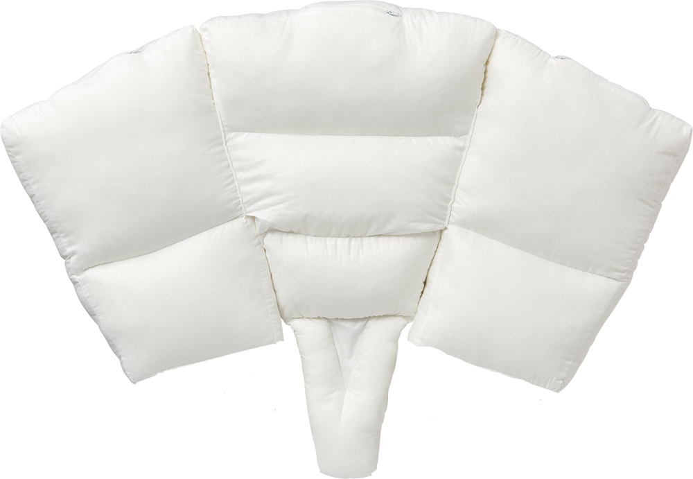 肩甲骨の位置を整えて肩の痛みをサポートする